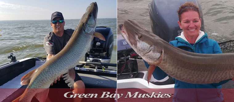 Green Bay Muskies