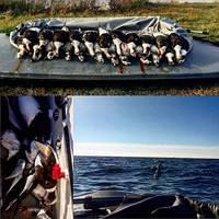 Green Bay Duck Hunting Guide
