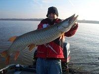 November Green Bay Musky