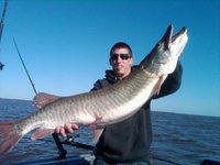 October Green Bay Muskie